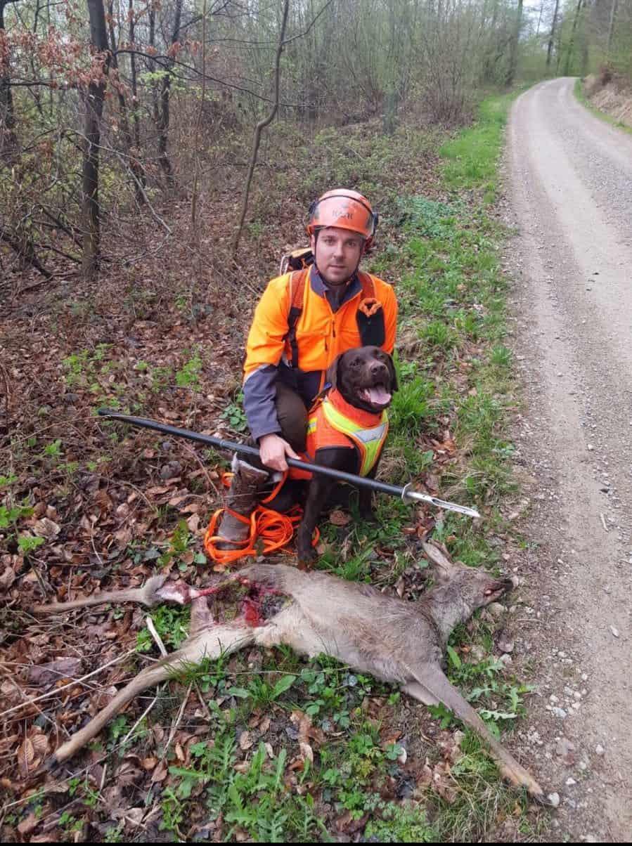 Unfall Jagd Bild Galerie