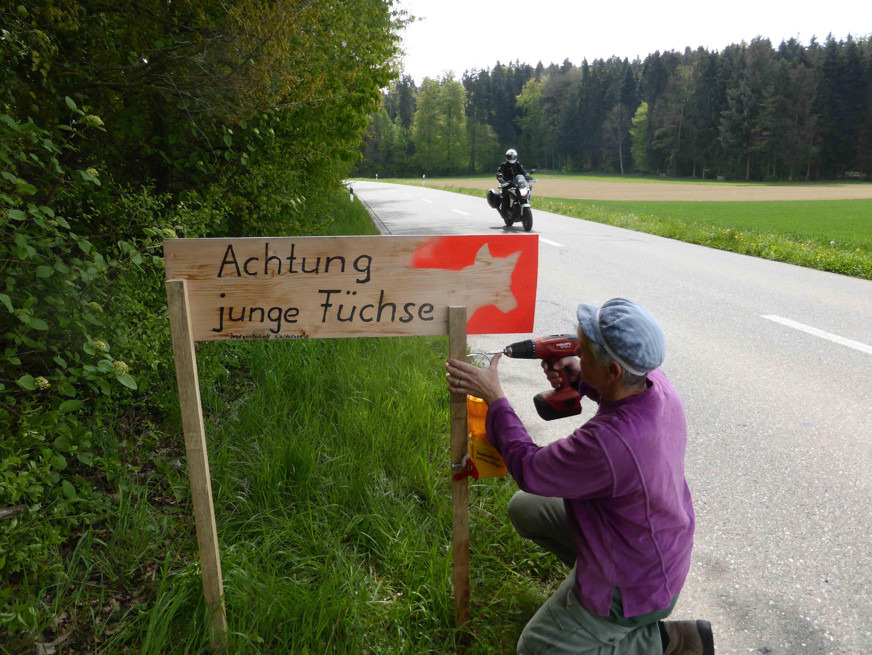 Schild Jagd Bild Galerie